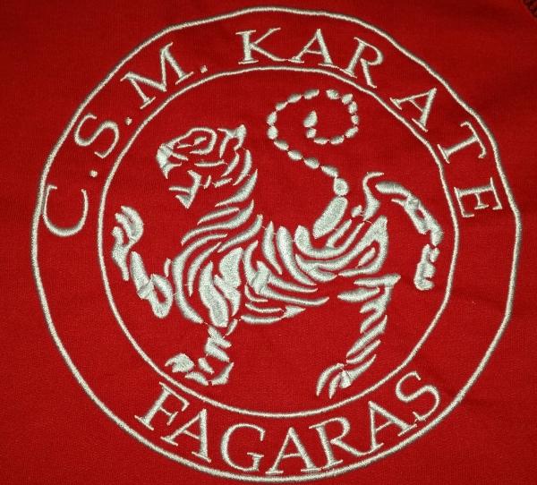 CSM Karate