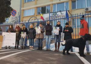 Ucigașul a zeci de animale, lăsat în libertate. Protest în fața sediului IPJ