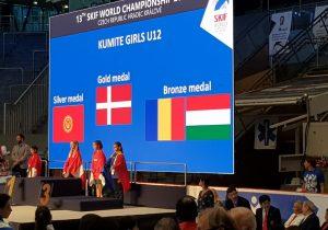 Făgărășenii s-au întors acasă cu 6 medalii, de la Campionatul Mondial de Karate