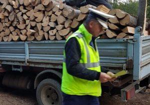 4 ≠ 5! Nici când transporți lemn!