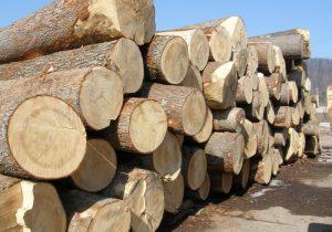Amenzi și lemn confiscat în Sâmbăta de Sus, Feldioara și Măieruș