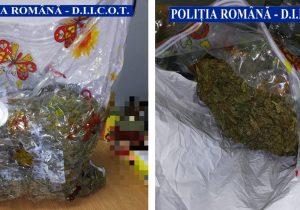 3 kg de cannabis, descoperite în Făgăraș