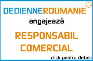 Dedienne - responsabil comercial