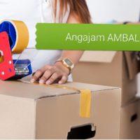 IT-PAC ROMÂNIA S.A angajează  AMBALATORI